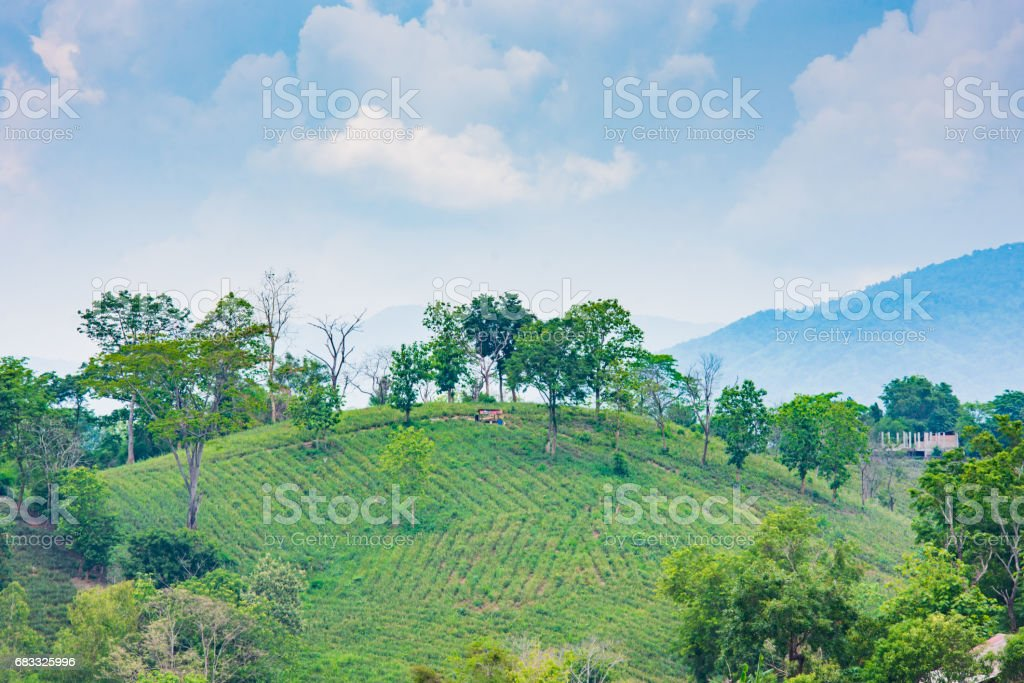 mountain and countryside landscape view in asia foto stock royalty-free