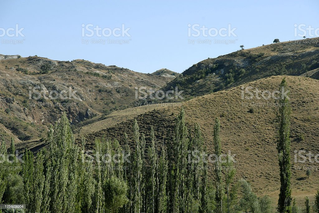 Mountain And Forest (Click for more) royalty-free stock photo