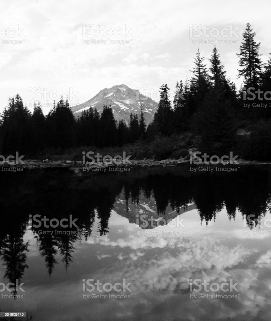 Mountain and Forest with Reversed Reflection stock photo