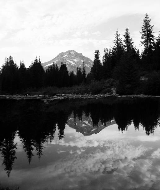 Montagne et forêt avec reflet inversé - Photo