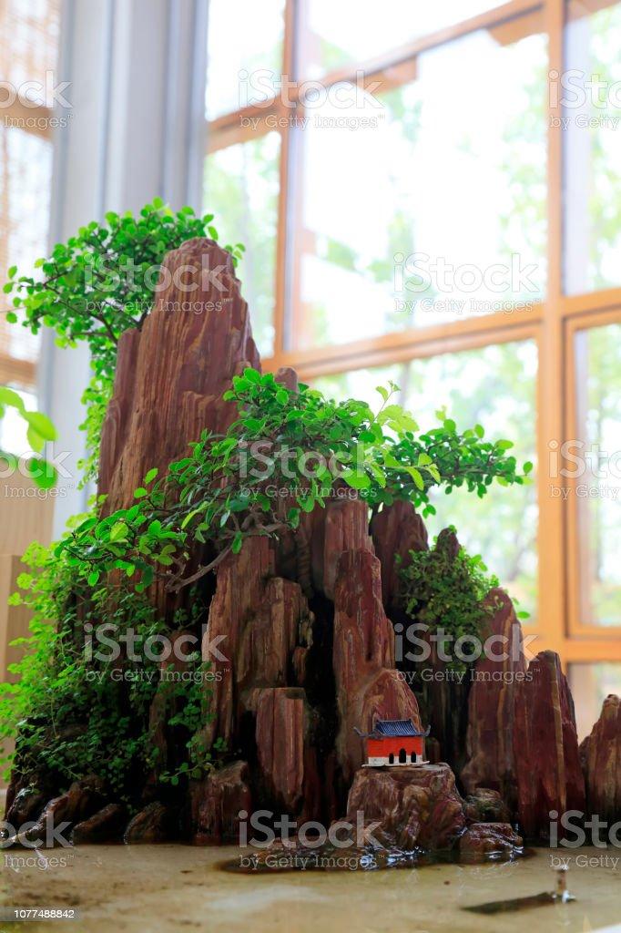 Mountain and green plant bonsai works\'r\'n