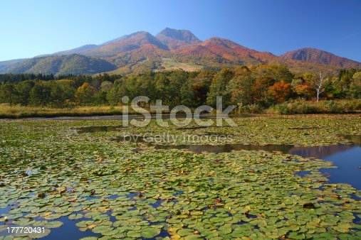 Mt. Myoko and lotus pond in autumn, Niigata, Japan