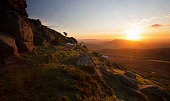 Sheep on high hillside at sunrise, Brecon Beacons, Wales