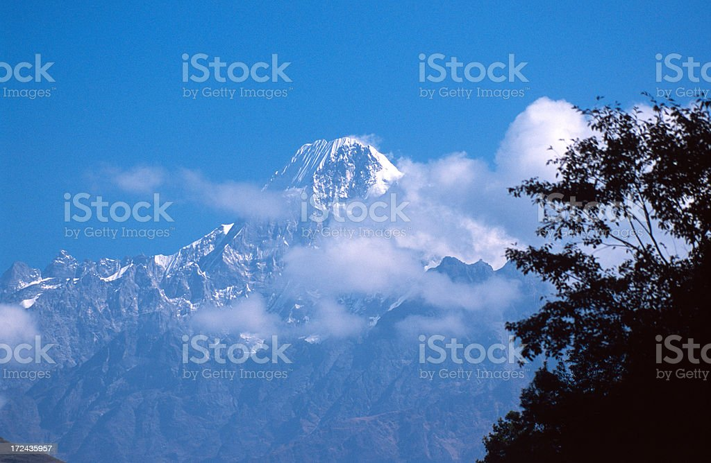 Mountain and trees stock photo