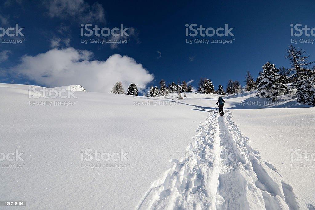 Mountain ascent in powder snow royalty-free stock photo