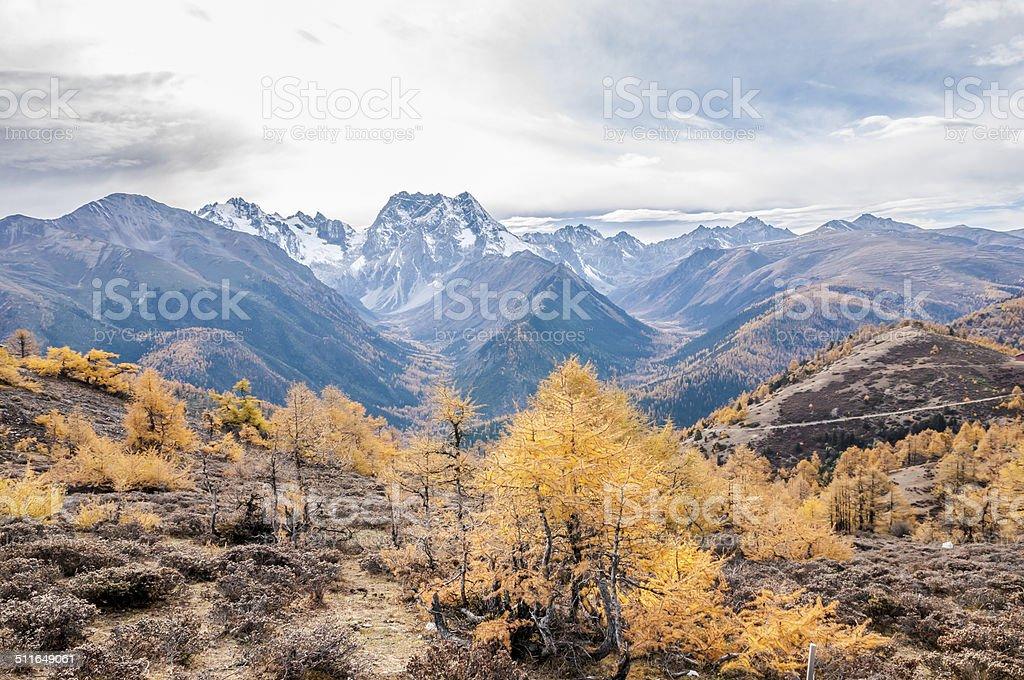 mountain autumn landscape stock photo