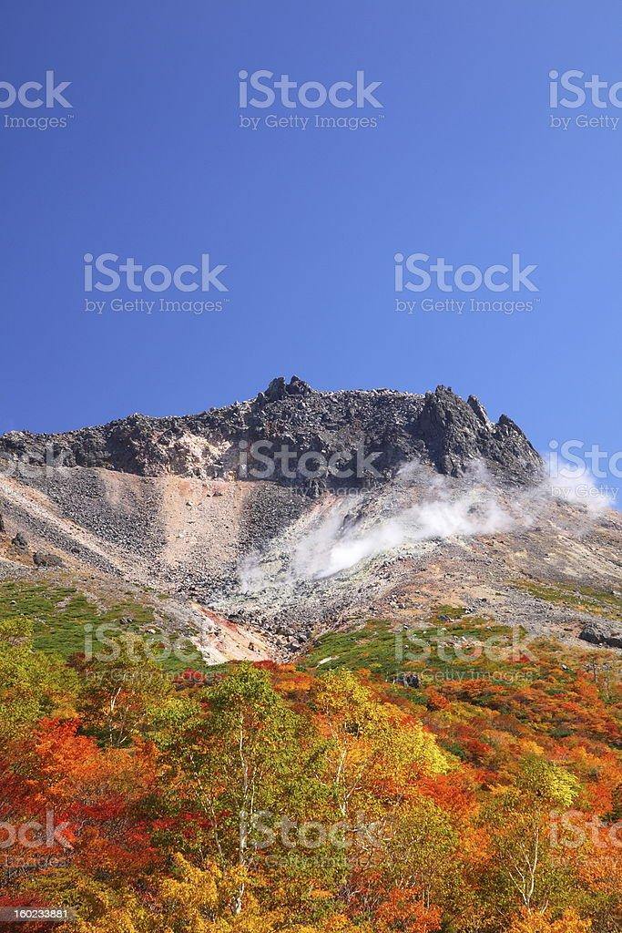Mountain autumn leaves royalty-free stock photo