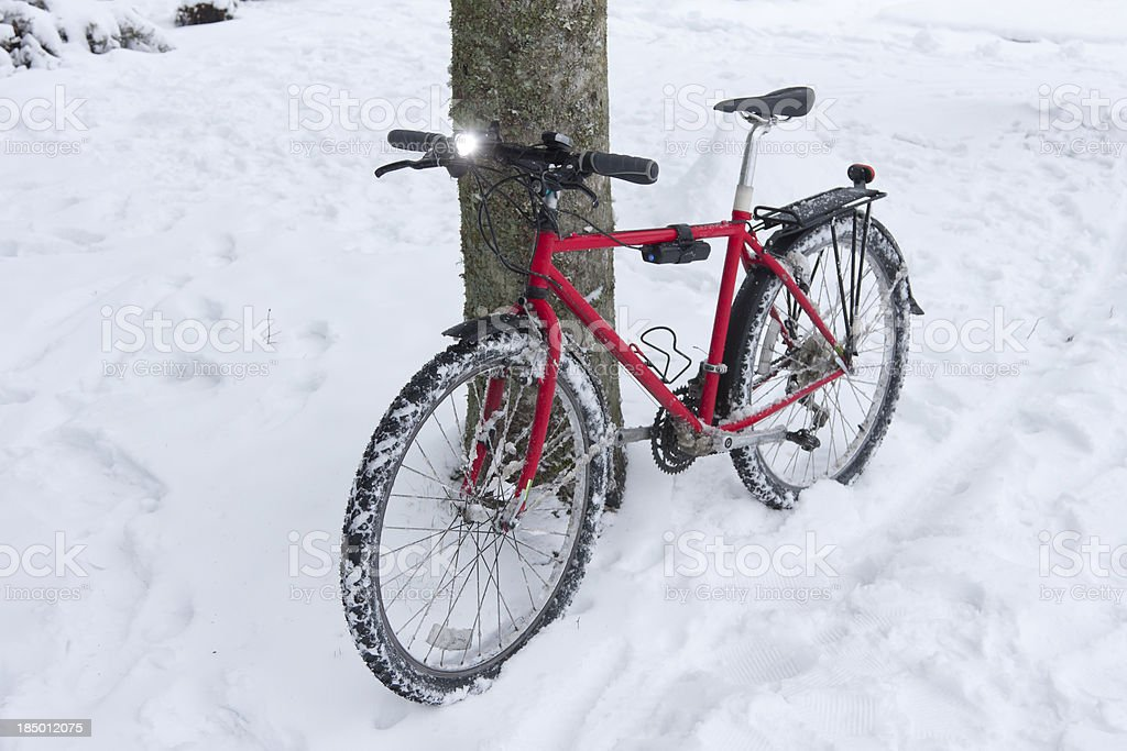 Mountain Bike against tree after being ridden in the snow royalty-free stock photo