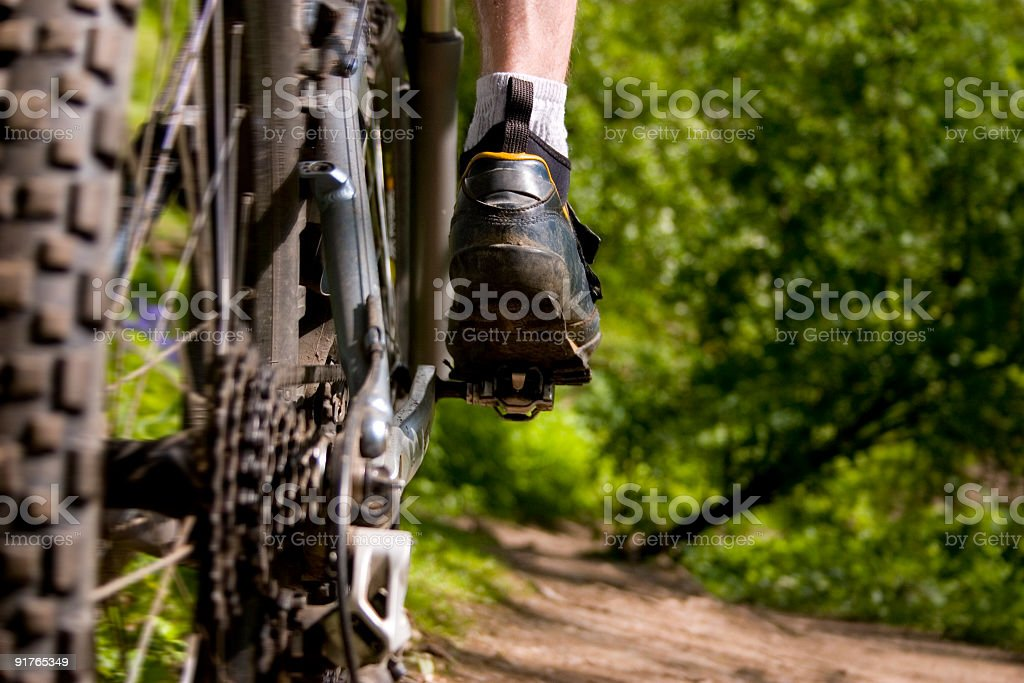 Mountain bike close up royalty-free stock photo