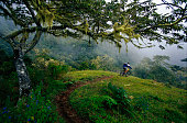 A man rides a downhill mountain bike trail in Costa Rica.