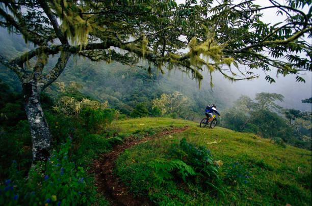 mountain bike costa rica - costa rica stockfoto's en -beelden