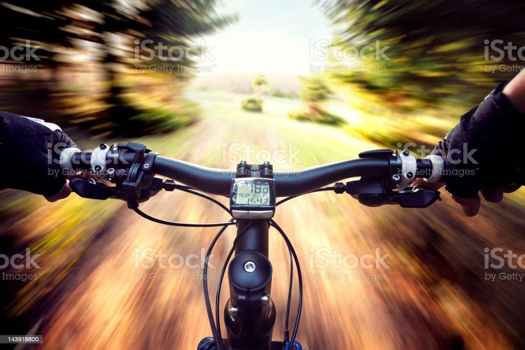 Mountain Bike Forest Adventure royalty-free stock photo