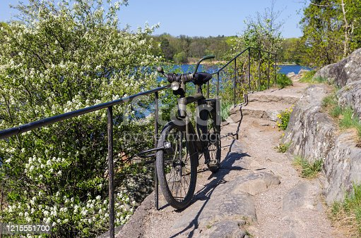 Mountain bike that is locked on a fence by a walkway on a mountain overlooking a river and a bush with white flowers in the spring.