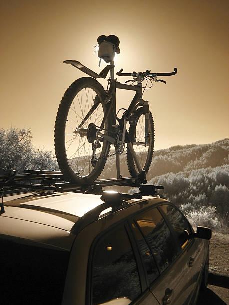 mountain-bike auf dem regal - fahrradhalter stock-fotos und bilder