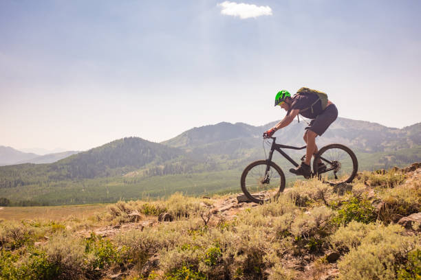 mountain bike ride - mountain biking stock photos and pictures