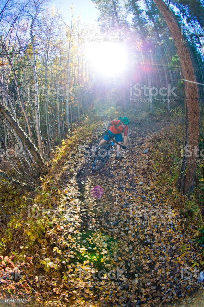 A male mountain biker rides down a trail during a cross-country ride...