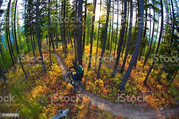 Photo of Mountain Bike Rider
