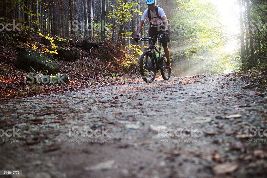 Mountain bike rider stock photo