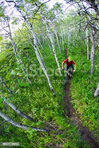 A man enjoys a cross-country mountain bike ride in the Rocky Mountains of Canada.