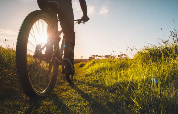 Mountain bike riding outdoor. stock photo