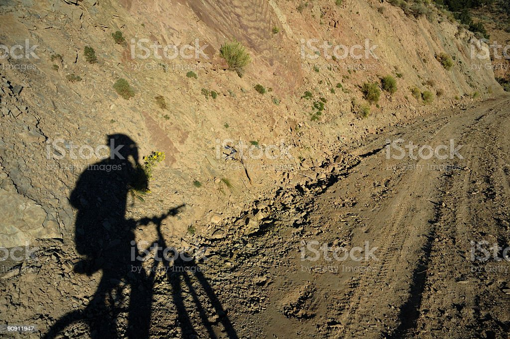 Mountain Bike Shadow royalty-free stock photo