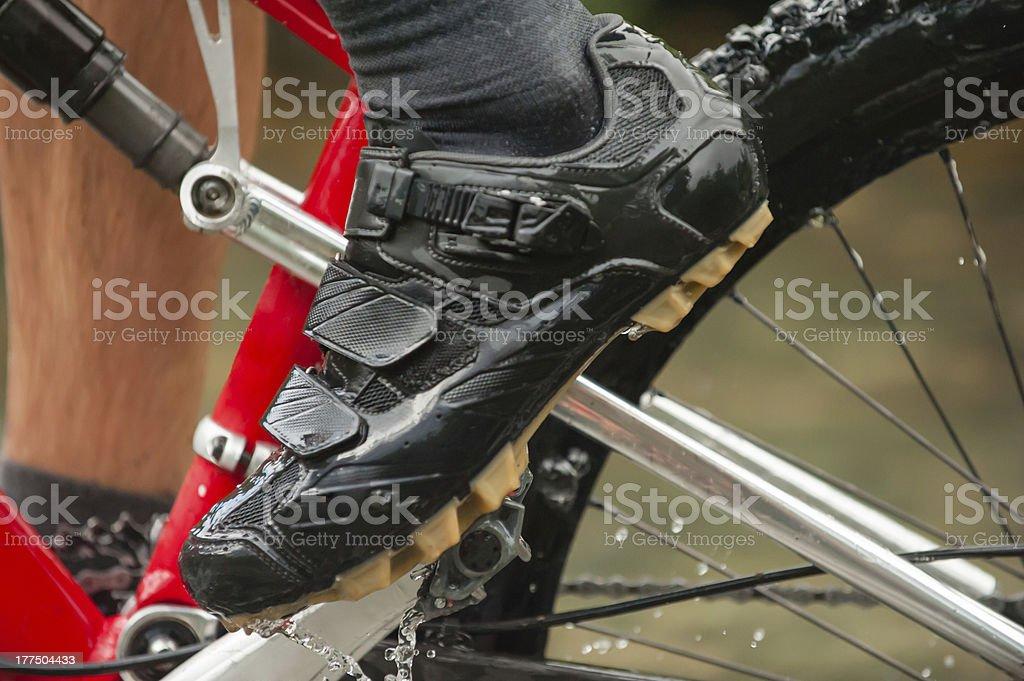 Mountain Bike Shoe royalty-free stock photo