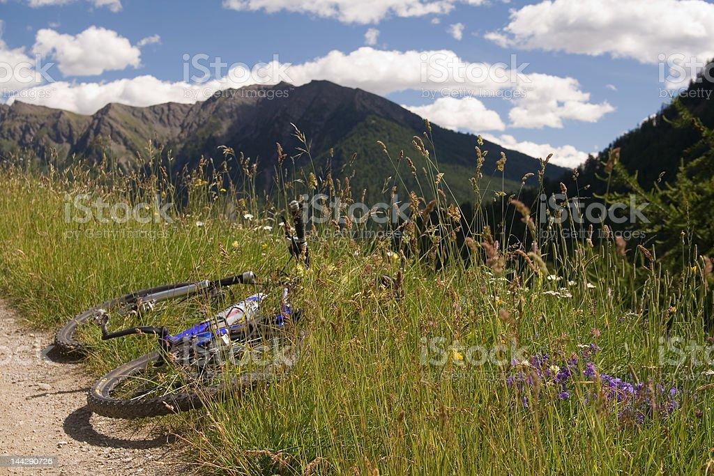 Mountain bike stop. stock photo