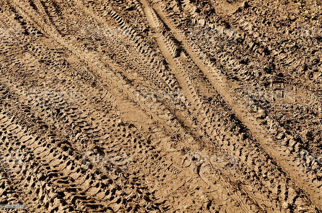Mountain Bike Tracks in the Mud stock photo