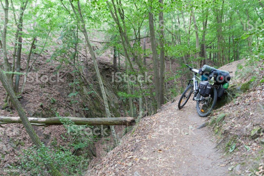 Bicicleta de montanha com alforjes na floresta. - foto de acervo
