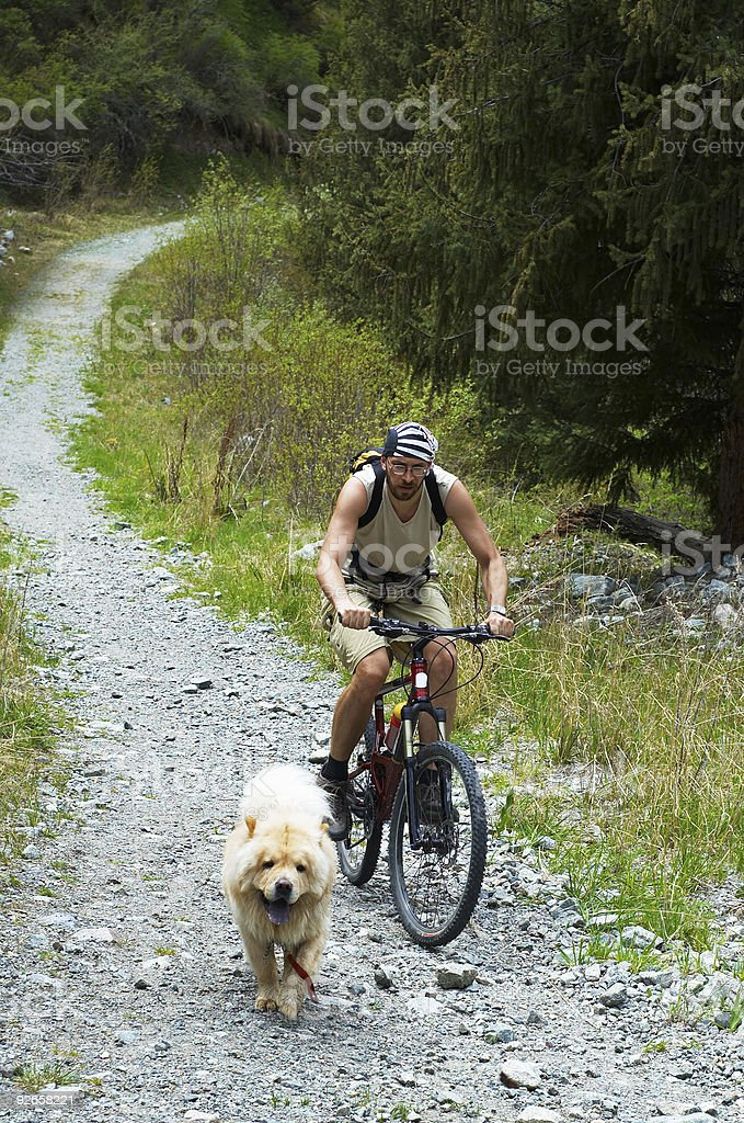 Mountain biker and dog on old road royalty-free stock photo