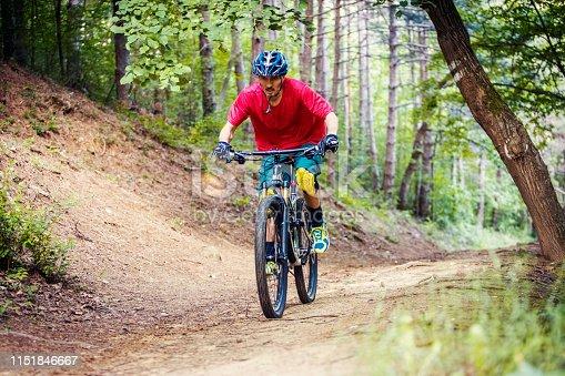 Mountain biker climbing in the woods
