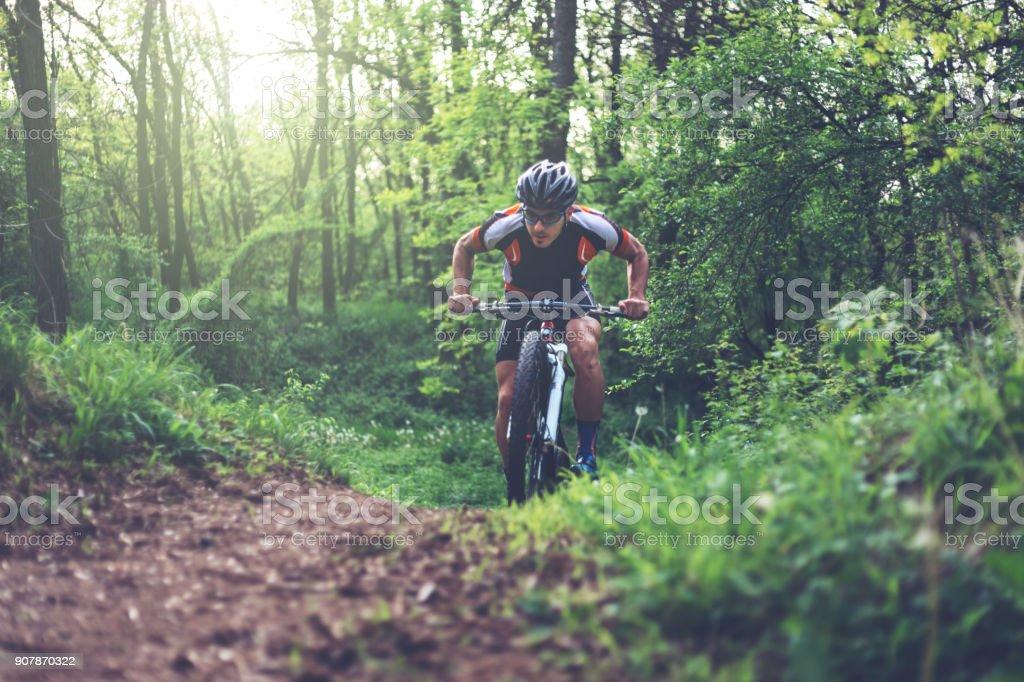 Mountain biker climbing in the woods stock photo