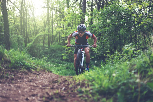 mountain biker climbing in the woods - mountain biking stock pictures, royalty-free photos & images
