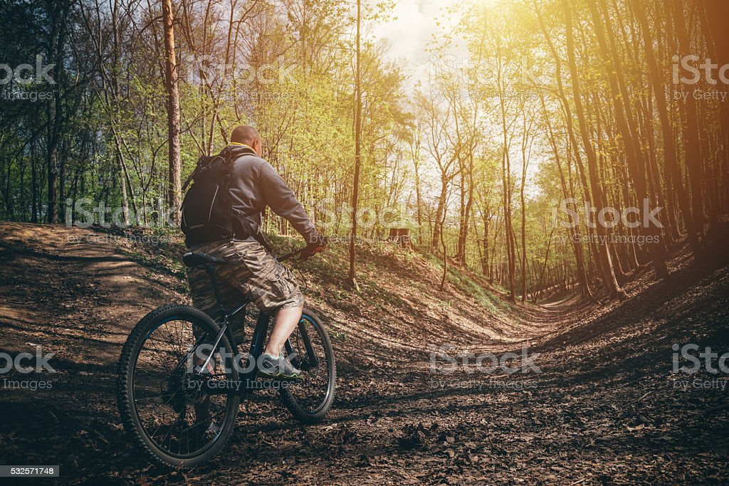 Mountain biker in a forest stock photo