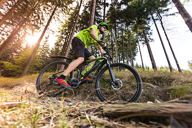 mountain biker in forest. - mountain biking stock photos and pictures