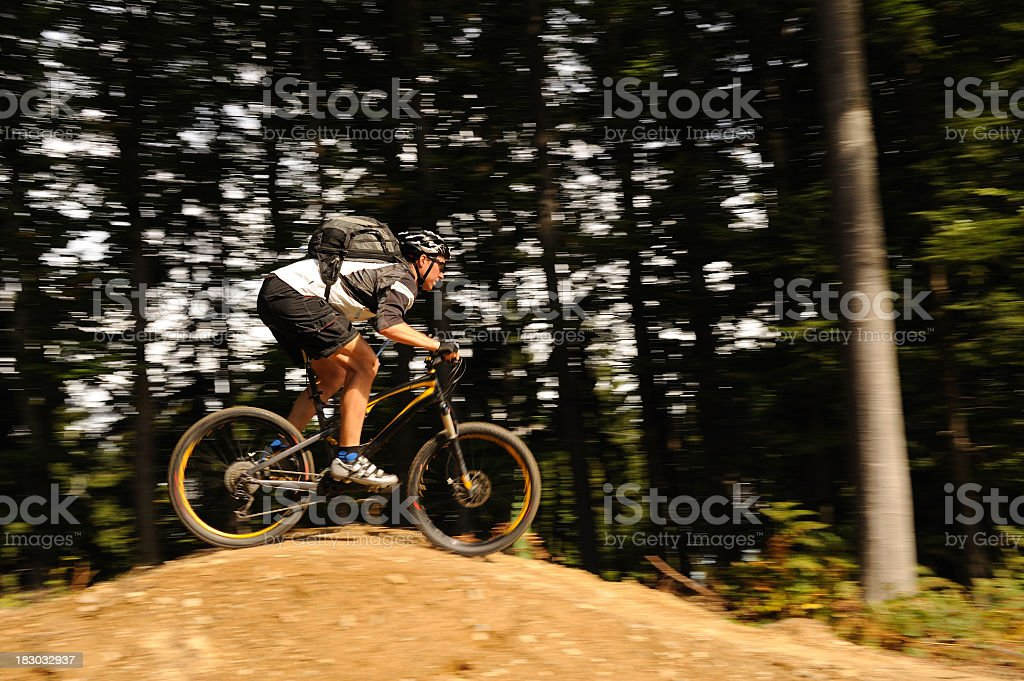 Mountain biker in the forest royalty-free stock photo