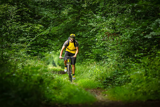 mountain biker in the woods mountain biker on yellow bike in the woods mountain biking stock pictures, royalty-free photos & images