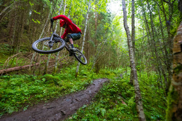 a mountain biker is jumping on his way down the course in the woods. - mountain biking stock photos and pictures