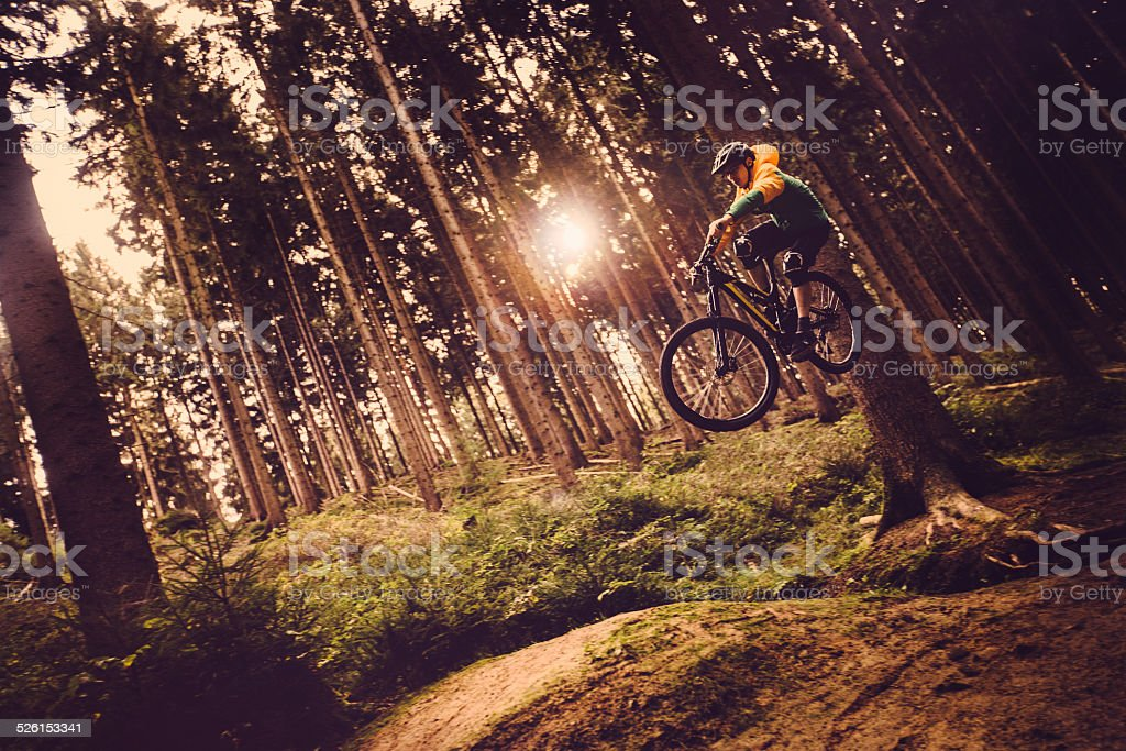 Mountain Biker Jumps In Forest stock photo