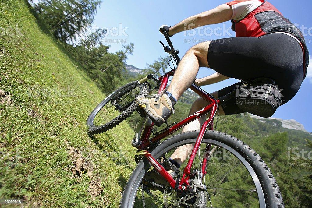 Mountain Biker on a meadow stock photo