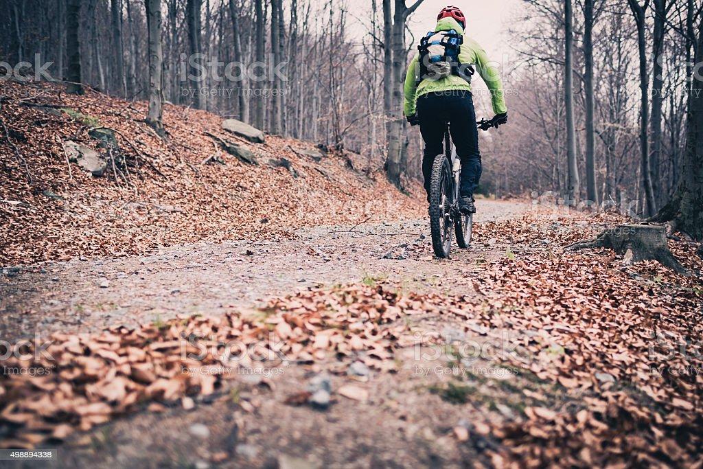 Mountainbiker auf Zyklus trail im Wald – Foto