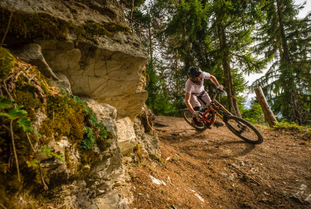 Mountain biker on trail, Swiss alps A mountain biker on a singeltrack trail in woodland in the Verbier region of Switzerland. mountain biking stock pictures, royalty-free photos & images