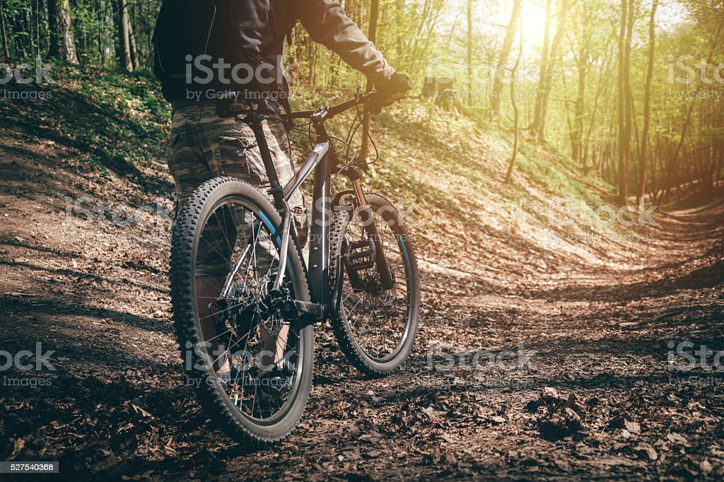 Mountain biker ready for the ride through the forest stock photo
