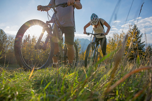523172398 istock photo Mountain biker rides along grassy path, in autumn 1264516736