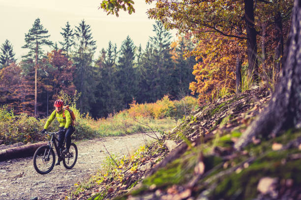 mountain biker riding cycling in autumn forest - mountain biking stock photos and pictures