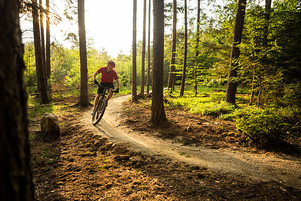 Mountain biker riding cycling in summer forest – Foto