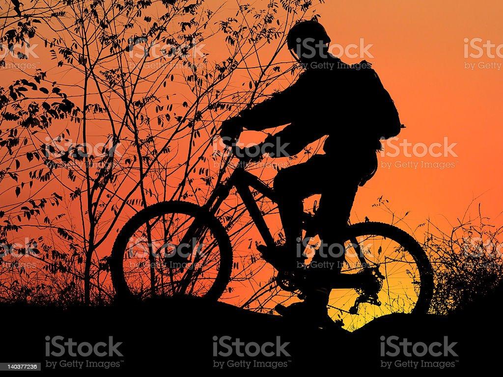mountain biker silhouette in orange sunrise royalty-free stock photo