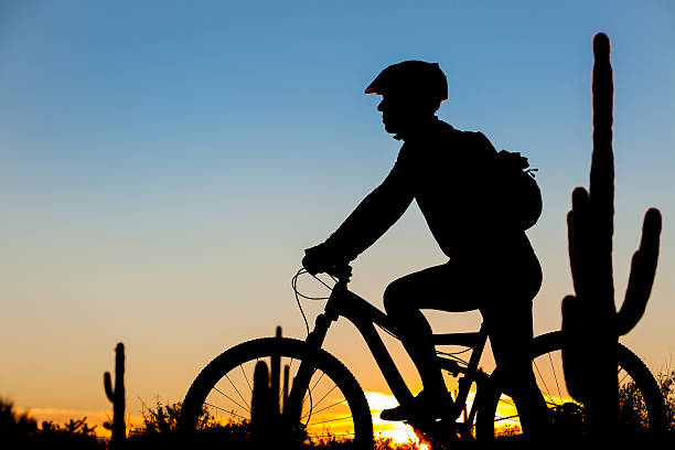 Mountain Biker Sunset Mountain biker silhouette at sunset in the desert. pima county stock pictures, royalty-free photos & images