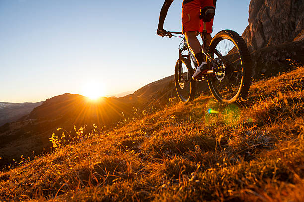 mountainbiker - mountain bike stock pictures, royalty-free photos & images