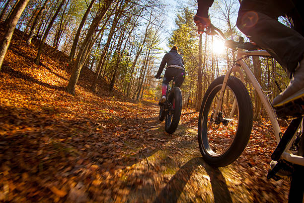 Mountain biking along a trail through the woods stock photo